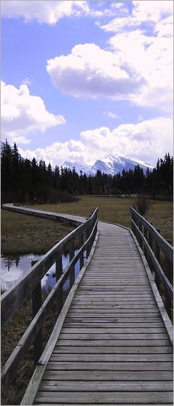 Boardwalk Canmore Alberta